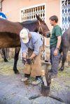 Els ferrers van mostrar com es posaven les ferradures als cavalls i als ases, a l'estand dels Amics de Sant Antoni Abat