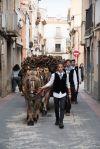 Carro de ceps dels Amics de Sant Antoni Abat de Castellbisbal